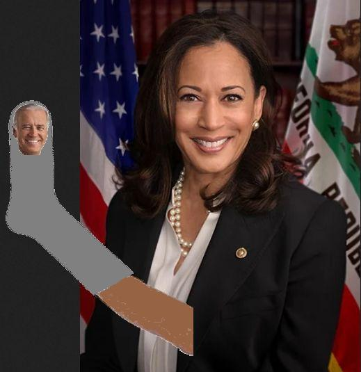 The USA is no longer the nice little democracy it used to be—it is a shadow government and a puppet government (Biden will be Kamala Harris' sock puppet) and an oligarchy—not a democracy